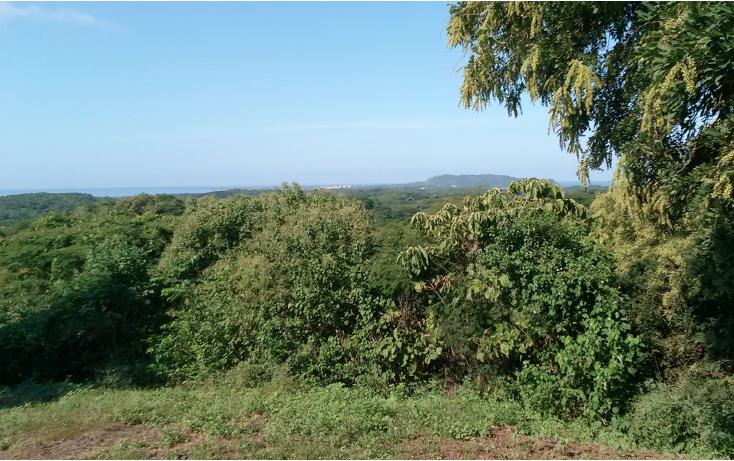 Foto de terreno habitacional en venta en  , higuera blanca, bah?a de banderas, nayarit, 1351827 No. 04