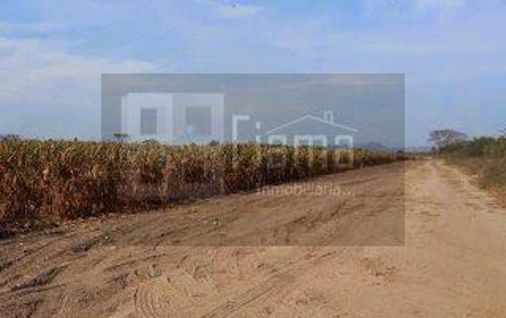 Foto de rancho en renta en  , higuera gorda, del nayar, nayarit, 1308021 No. 01