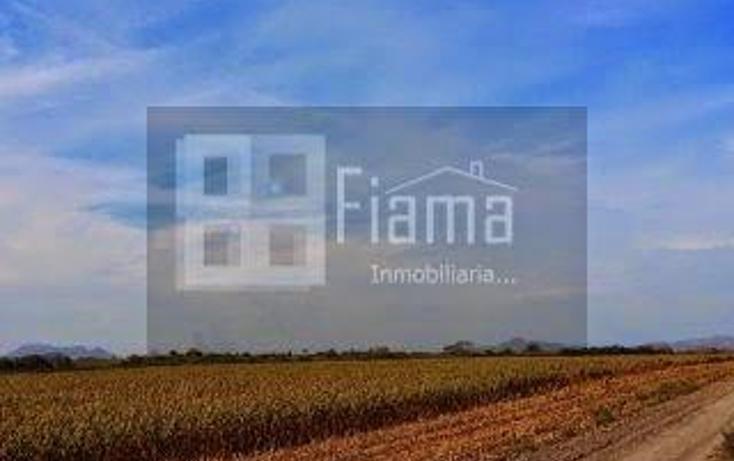 Foto de rancho en renta en  , higuera gorda, del nayar, nayarit, 1308021 No. 06