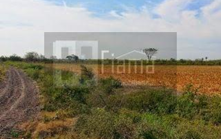 Foto de rancho en renta en  , higuera gorda, del nayar, nayarit, 1308021 No. 09