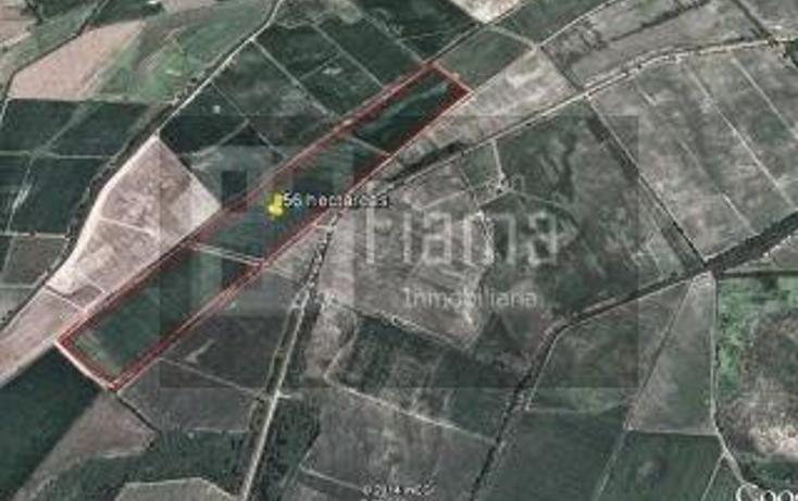 Foto de rancho en renta en  , higuera gorda, del nayar, nayarit, 1308021 No. 16
