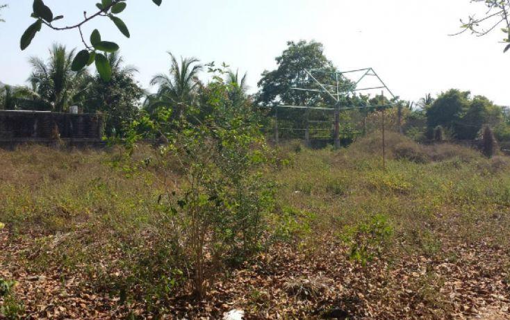Foto de terreno habitacional en venta en higueras, barrio viejo, zihuatanejo de azueta, guerrero, 803757 no 06