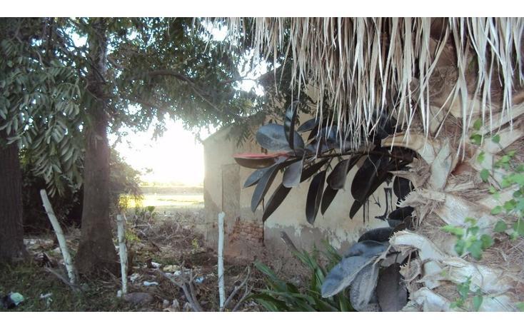 Foto de terreno habitacional en venta en  , higueras de zaragoza centro, ahome, sinaloa, 1858444 No. 09