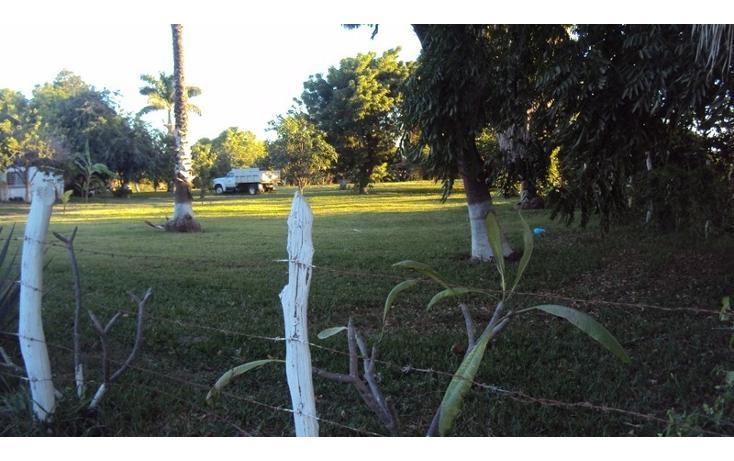 Foto de terreno habitacional en venta en  , higueras de zaragoza centro, ahome, sinaloa, 1858444 No. 10