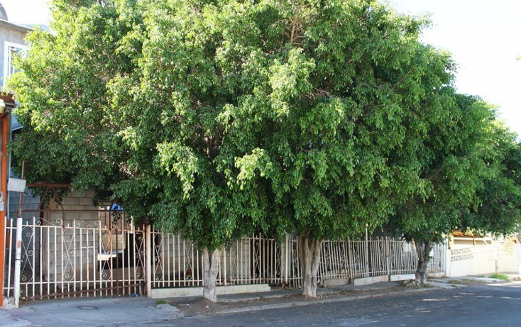 Foto de casa en venta en  , hip?dromo, tijuana, baja california, 1156209 No. 04