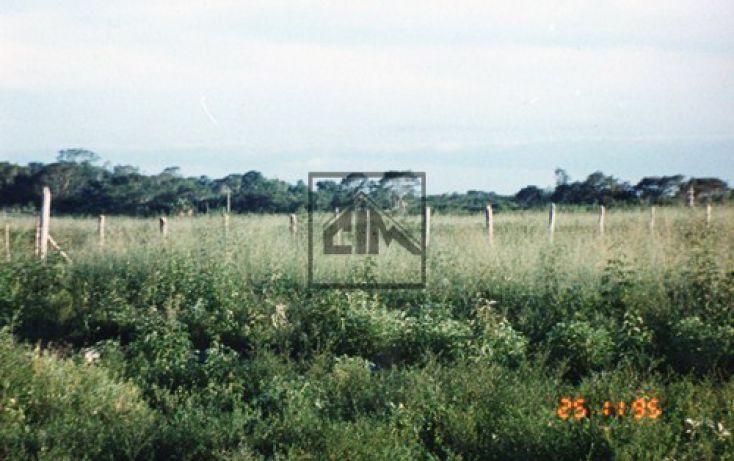 Foto de terreno habitacional en venta en, hopelchen centro, hopelchén, campeche, 483657 no 04
