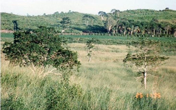 Foto de terreno comercial en venta en  , hopelchen centro, hopelchén, campeche, 942945 No. 01