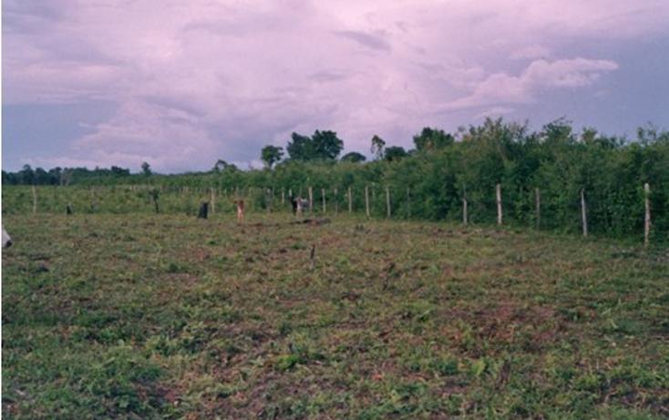 Foto de terreno comercial en venta en  , hopelchen centro, hopelchén, campeche, 942945 No. 03