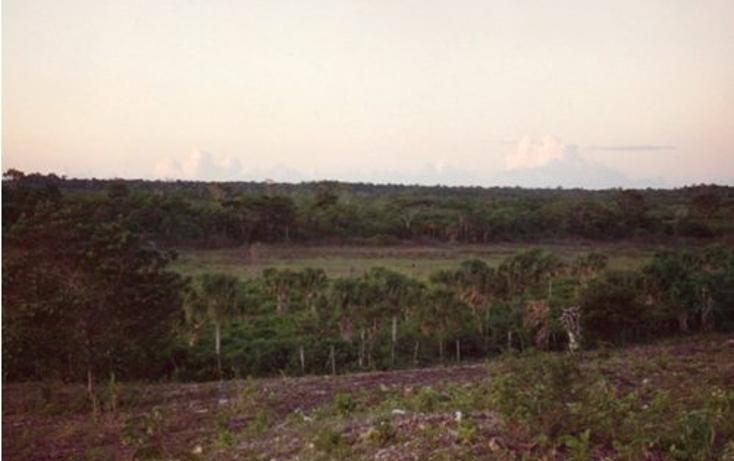 Foto de terreno comercial en venta en  , hopelchen centro, hopelchén, campeche, 942945 No. 05