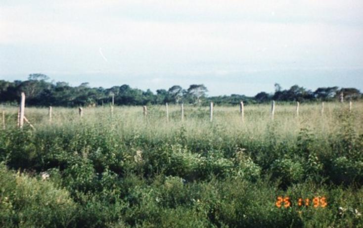 Foto de terreno comercial en venta en  , hopelchen centro, hopelchén, campeche, 942945 No. 06