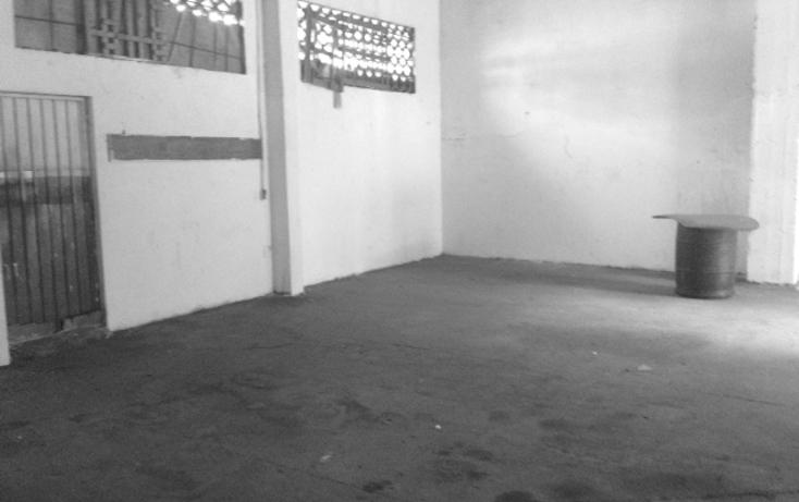 Foto de nave industrial en renta en  , hornos, acapulco de juárez, guerrero, 1290321 No. 03