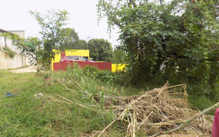 Foto de terreno habitacional en venta en hortensia 13, arroyo blanco, xalapa, veracruz, 2027662 no 07