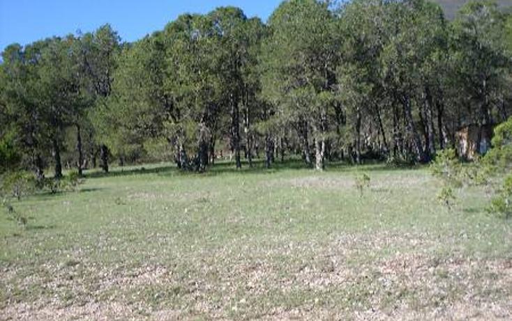 Foto de terreno habitacional en venta en  , huachichil, arteaga, coahuila de zaragoza, 1149861 No. 06