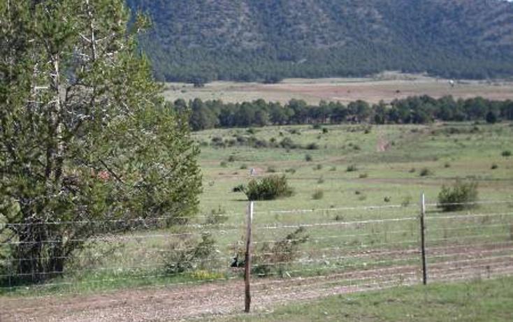 Foto de terreno habitacional en venta en  , huachichil, arteaga, coahuila de zaragoza, 1149861 No. 09