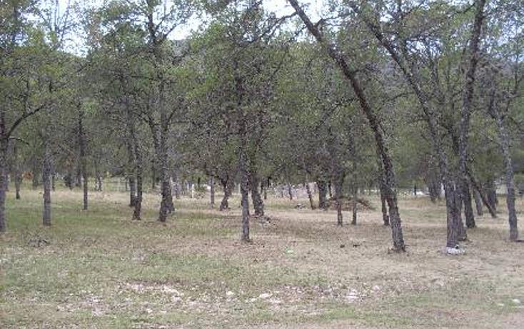 Foto de terreno habitacional en venta en  , huachichil, arteaga, coahuila de zaragoza, 1149861 No. 10
