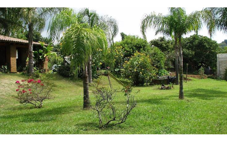 Foto de terreno comercial en venta en  , huachinantilla, tepoztlán, morelos, 1080861 No. 11