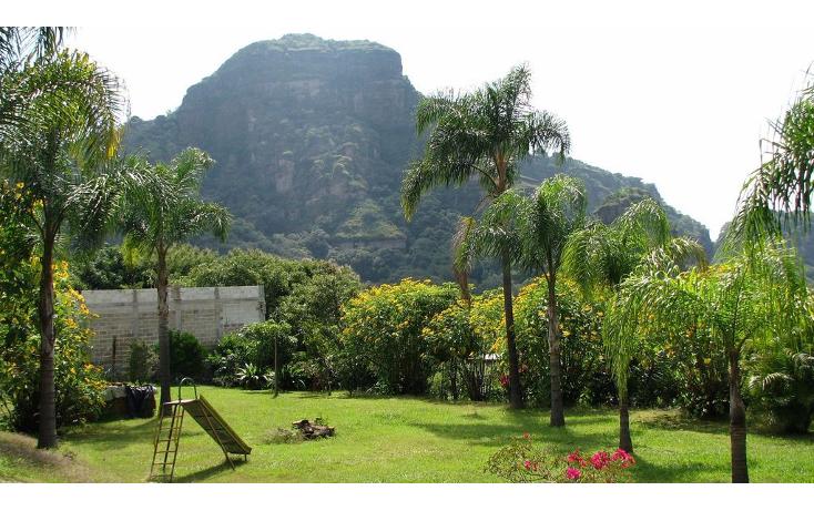 Foto de terreno comercial en venta en  , huachinantilla, tepoztlán, morelos, 1080861 No. 15