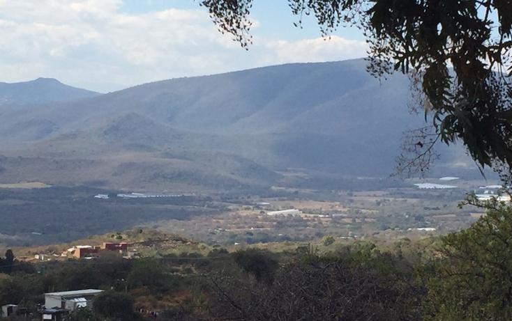 Foto de terreno habitacional en venta en  , huachinantilla, tepoztl?n, morelos, 1524915 No. 02