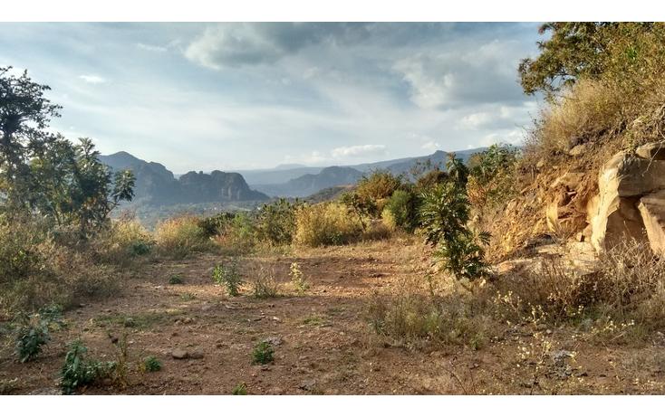 Foto de terreno habitacional en venta en  , huachinantilla, tepoztl?n, morelos, 1524915 No. 14