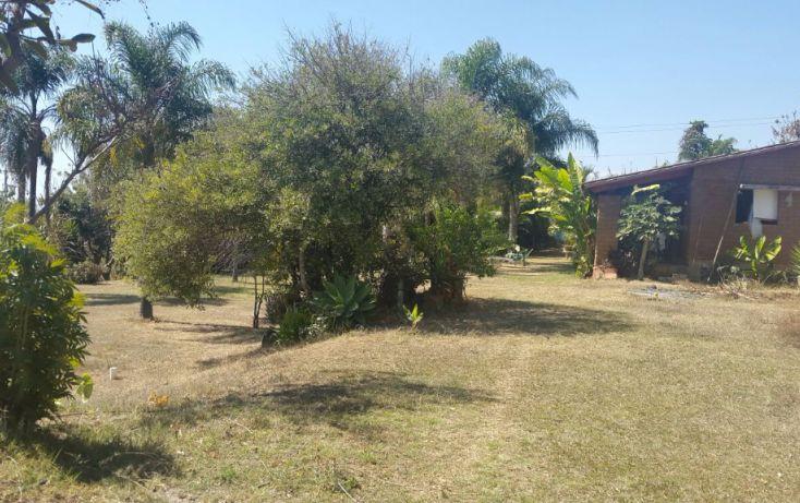 Foto de terreno comercial en venta en, huachinantilla, tepoztlán, morelos, 1861638 no 01
