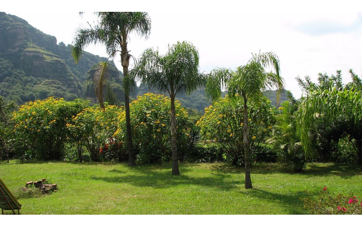 Foto de terreno comercial en venta en  , huachinantilla, tepoztl?n, morelos, 1861638 No. 05