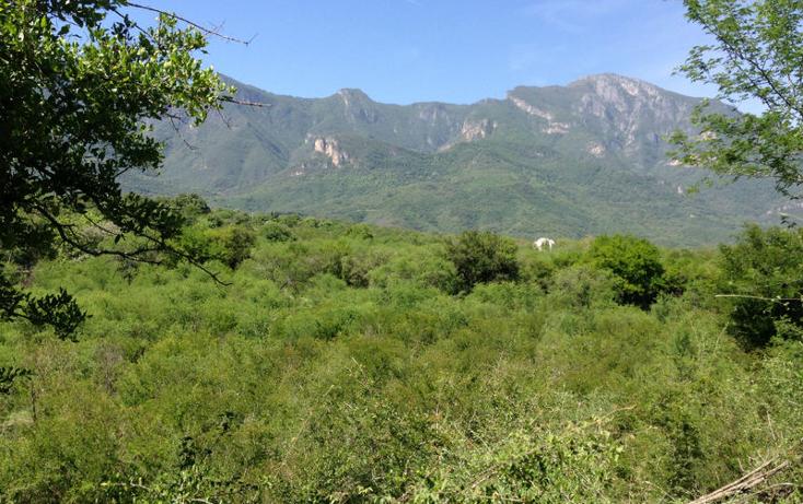 Foto de terreno habitacional en venta en  , huajuquito o los cavazos, santiago, nuevo le?n, 1195085 No. 05