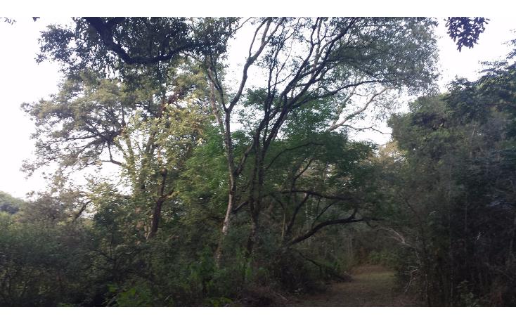 Foto de terreno habitacional en venta en  , huajuquito o los cavazos, santiago, nuevo le?n, 1355243 No. 04