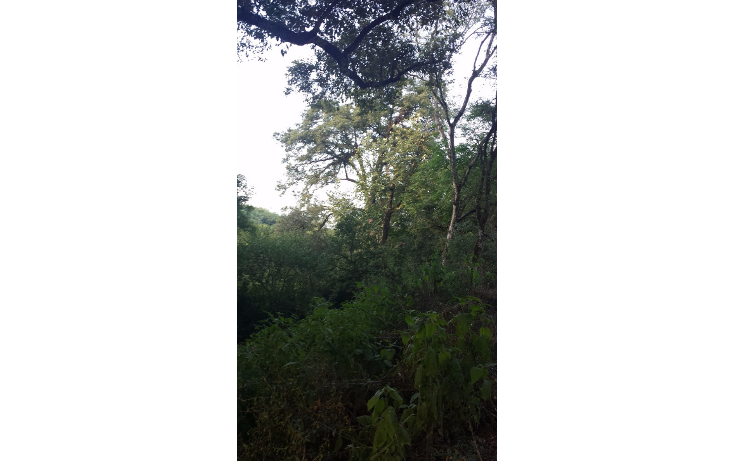 Foto de terreno habitacional en venta en  , huajuquito o los cavazos, santiago, nuevo le?n, 1355243 No. 06