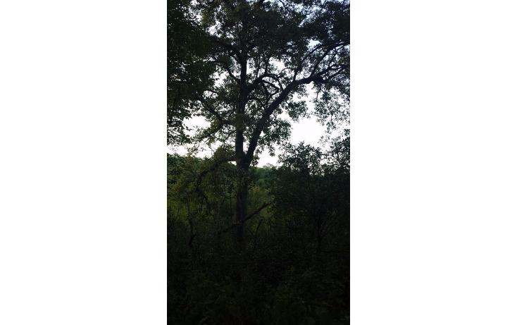 Foto de terreno habitacional en venta en  , huajuquito o los cavazos, santiago, nuevo le?n, 1355243 No. 07