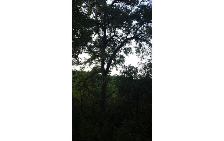 Foto de terreno habitacional en venta en  , huajuquito o los cavazos, santiago, nuevo le?n, 1355243 No. 09