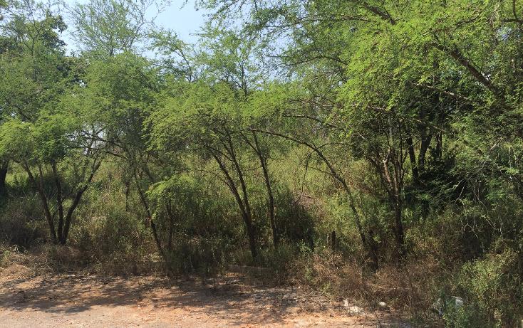 Foto de terreno habitacional en venta en  , huajuquito o los cavazos, santiago, nuevo león, 1610854 No. 06