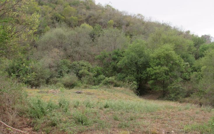 Foto de terreno habitacional en venta en  , huajuquito, santiago, nuevo le?n, 1403813 No. 06