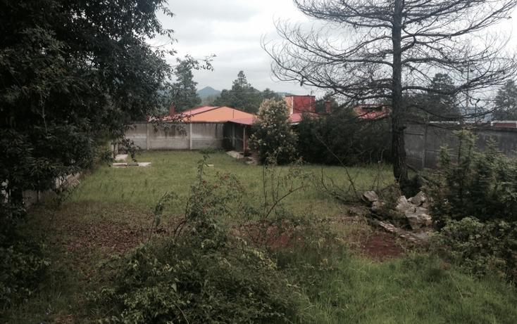 Foto de terreno habitacional en venta en  , huasca de ocampo centro, huasca de ocampo, hidalgo, 1558854 No. 05