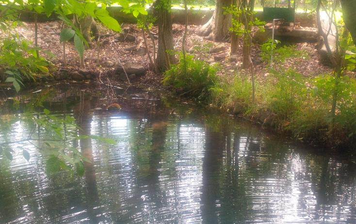 Foto de terreno habitacional en venta en huasca del campo 0, huasca de ocampo centro, huasca de ocampo, hidalgo, 2650580 No. 02