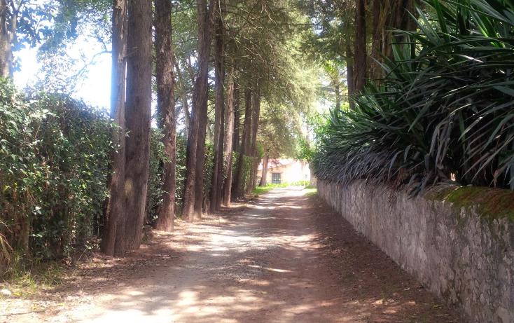 Foto de terreno habitacional en venta en huasca del campo 0, huasca de ocampo centro, huasca de ocampo, hidalgo, 2650580 No. 06