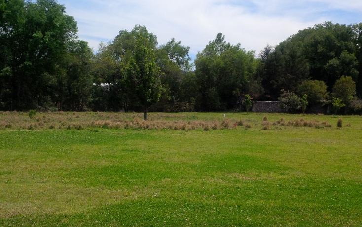 Foto de terreno habitacional en venta en huasca del campo 0, huasca de ocampo centro, huasca de ocampo, hidalgo, 2650580 No. 08