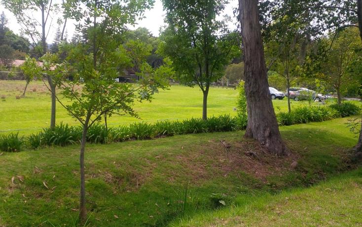 Foto de terreno habitacional en venta en huasca del campo 0, huasca de ocampo centro, huasca de ocampo, hidalgo, 2650580 No. 09