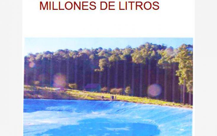 Foto de terreno comercial en venta en huerta aguacatera 10, zirimondiro, tancítaro, michoacán de ocampo, 1685242 no 06