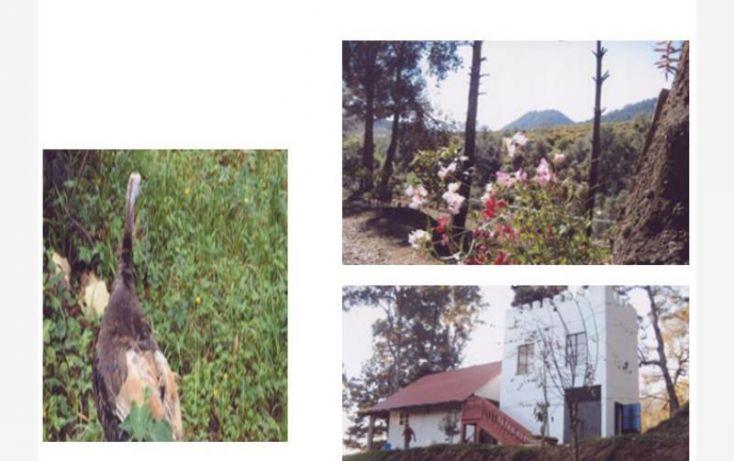 Foto de terreno comercial en venta en huerta aguacatera 10, zirimondiro, tancítaro, michoacán de ocampo, 1685242 no 07