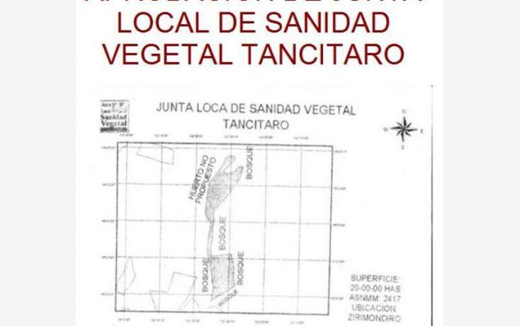 Foto de terreno comercial en venta en huerta aguacatera 10, zirimondiro, tancítaro, michoacán de ocampo, 1685242 no 11