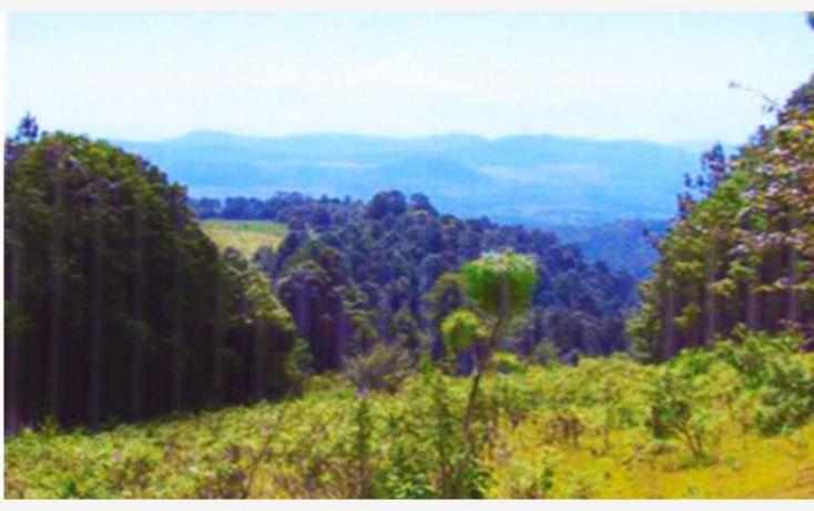 Foto de terreno comercial en venta en huerta aguacatera 10, zirimondiro, tancítaro, michoacán de ocampo, 1685242 no 16