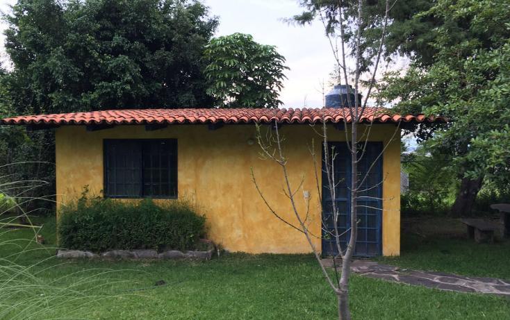 Foto de rancho en venta en  , huertas de la hacienda, jacona, michoacán de ocampo, 1519401 No. 13