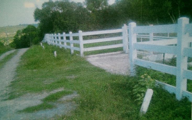 Foto de rancho en venta en  , huertas estación, montemorelos, nuevo león, 1180717 No. 03