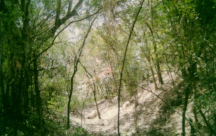 Foto de rancho en venta en  , huertas estación, montemorelos, nuevo león, 1180717 No. 05