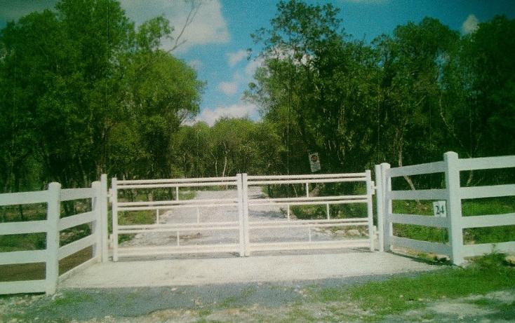 Foto de rancho en venta en  , huertas estación, montemorelos, nuevo león, 1180717 No. 06