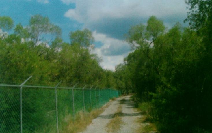 Foto de rancho en venta en  , huertas estación, montemorelos, nuevo león, 1180717 No. 08