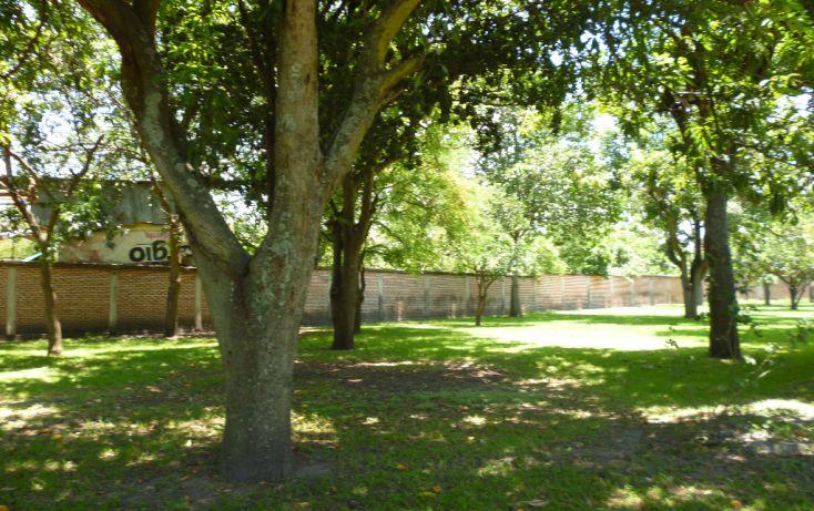 Foto de terreno habitacional en venta en, huertos de miacatlan, miacatlán, morelos, 1000691 no 06