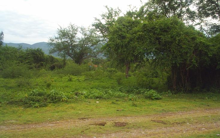 Foto de terreno habitacional en venta en  , huertos de miacatlan, miacatl?n, morelos, 1242071 No. 02