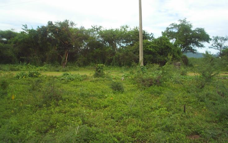 Foto de terreno habitacional en venta en  , huertos de miacatlan, miacatl?n, morelos, 1242071 No. 05