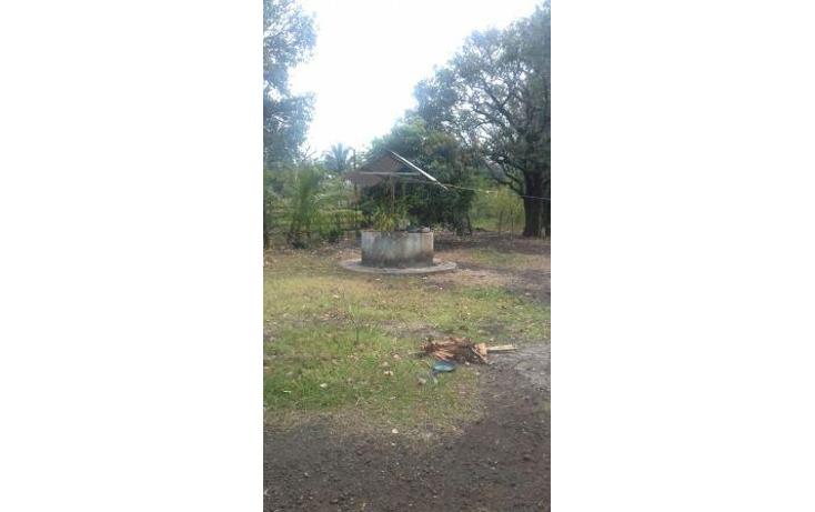 Foto de rancho en venta en  , hueyapan de ocampo, hueyapan de ocampo, veracruz de ignacio de la llave, 1288279 No. 02